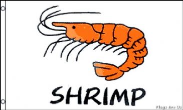 Shrimp  (White)